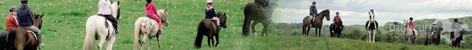 equestrian holidays co clare